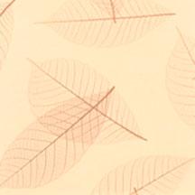 DG011 - Желтый Лист Бискотти